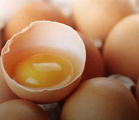 ปลดความเชื่อ คอเรสเตอรอลในไข่ไก่